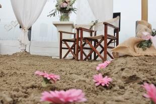 Gerbera's in het zand